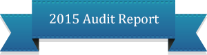 2015-audit-report