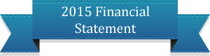 2013financestatement