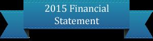 2013financestatement